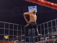 autoplay_gif gif hunter_hearst_helmsley mankind mick_foley steel_cage summerslam superplex wwf // 200x150 // 1.1MB