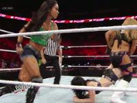 Raw aj_lee autoplay_gif gif natalya paige referee sharpshooter shining_wizard wwe // 200x150 // 2.2MB