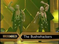 luke_bush the_bushwhackers wrestlemania wwf // 640x480 // 80.8KB