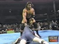 ECW_On_TNN autoplay_gif ecw gif mike_awesome powerbomb spike_dudley // 200x150 // 3.1MB