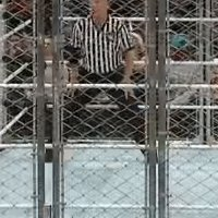 Raw autoplay_gif chair referee steel_cage wwe // 200x200 // 3.6MB