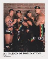 d'lo_brown hat nation_of_domination promotional_image the_godfather the_rock wwf // 651x800 // 136.5KB
