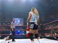 al_snow autoplay_gif fire_extinguisher gif hardcore_holly over_the_edge referee wwf // 200x150 // 2.7MB