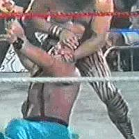 "Jimmy_""Superfly""_Snuka autoplay_gif blood ecw gif tommy_dreamer // 200x200 // 2.1MB"
