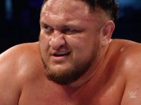 Super_Show-Down samoa_joe smiling wwe // 424x318 // 182.0KB