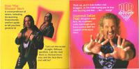 "Bret_""Hitman""_Hart WCW_Ring_Warriors diamond_dallas_page sunglasses wcw // 1600x802 // 1.9MB"