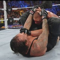 autoplay_gif brock_lesnar gogoplata middle_finger summerslam undertaker wwe // 200x200 // 4.9MB