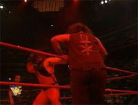 autoplay_gif gif kane mankind mick_foley survivor_series table wwf // 250x191 // 3.9MB