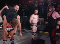 Dean_Ambrose autoplay_gif cesaro gif kane mask sheamus shocked tlc wwe // 250x185 // 2.5MB