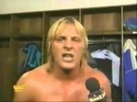 owen_hart royal_rumble wwf // 958x720 // 37.9KB