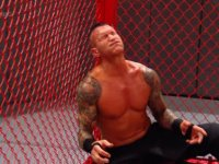 hell_in_a_cell randy_orton wwe // 424x318 // 253.1KB