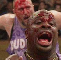 autoplay_gif blood bubba_ray_dudley cookie_sheet devon dudley_boyz ecw gif one_night_stand wwe yelling // 200x198 // 1.7MB