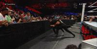 Payback Roman_Reigns Seth_Rollins autoplay_gif gif jamie_noble middle_finger wwe // 200x101 // 1.5MB