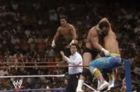 Hercules_Hernandez Paul_Roma Power_And_Glory autoplay_gif gif marty_jannetty referee summerslam superplex suplex wwf // 200x132 // 1.0MB