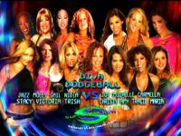 Joy_Giovanni Stacy_Keibler WWE_Women's_Championship amy_weber carmella_deascre christy_hemme gail_kim jazz maria_kanellis match_card michelle_mccool molly_holly smiling summerslam tracie trish_stratus victoria wwe // 320x240 // 32.6KB