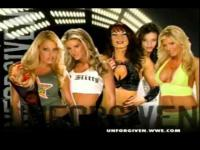 Ashley_Massaro WWE_Women's_Championship candice_michelle match_card torrie_wilson trish_stratus unforgiven victoria // 480x360 // 18.3KB