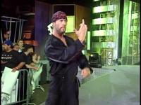 fuck_you middle_finger sean_waltman tna // 424x318 // 212.8KB