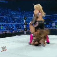 aj_lee autoplay_gif gif natalya referee sharpshooter smackdown tapping wwe yelling // 200x200 // 2.3MB